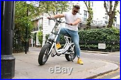 250W Electric Bike With Pedal Assist 2 Seater, Throttle and On Road Tyres